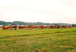 Planes of Marche Verte aerobatic team.jpg
