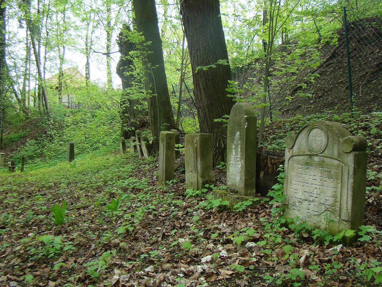 Plaue-jundefriedhof-2013-c.jpg