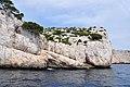 Plissement rocheux, calanques de Marseille, 2013.jpg