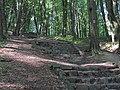 Po schodoch - panoramio - Jan Starec (1).jpg