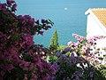 Pogled sa Vile Novka - panoramio.jpg