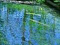 Pond 水塘 - panoramio.jpg