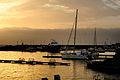 Porto turistico di Ognina Catania - Gommoni e Barche - Creative Commons by gnuckx m&m (5531779589).jpg