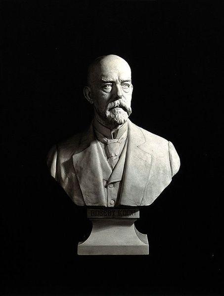 File:Portrait of Robert Herman Koch (1843 - 1910) Wellcome V0028726.jpg