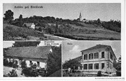 Postcard of Artiče