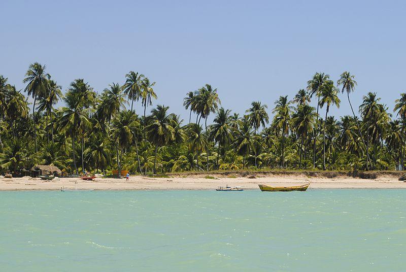 Praias de Maceió próprias para banho