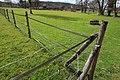 Prairie de Jaumeron à Gif-sur-Yvette le 1er avril 2015 - 13.jpg