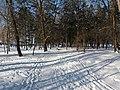 Prydniprovskyi Park (02.12.18) 01.jpg
