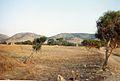 Ptolemais site.jpg