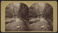 Raceway above the rapids, looking up, Ausable (Au Sable) Chasm, by Stoddard, Seneca Ray, 1844-1917 , 1844-1917.png