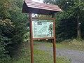 Rahin Wood near Ballyboggan - panoramio.jpg