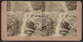 Rainbow falls, Watkins Glen, New York, U.S.A, by Kilburn, B. W. (Benjamin West), 1827-1909.png