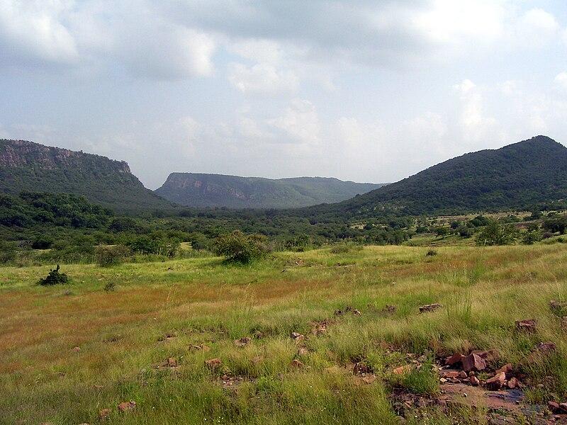 Ranthambore National Park newlyplace.com