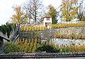 Rapperswil - Weingut - Lindenhof IMG 2942 ShiftN.jpg