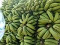Raw Banana of Sindh.jpg