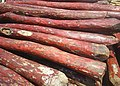Red sandal kadappa PIC 0006.JPG