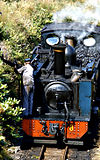 Class 98 Vale of Rheidol locomotive taking on water