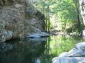 Riera en el Macizo del Montseny.JPG