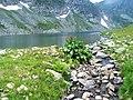 Rilski ezera 10.jpg