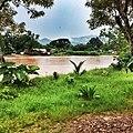 River@Hsipaw - panoramio.jpg