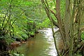River Dove - geograph.org.uk - 942009.jpg