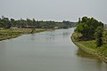 River Pichabani - Contai - East Midnapore 2015-05-01 8625.JPG