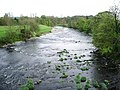 River Ribble - geograph.org.uk - 414339.jpg