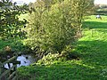 River Rother near Danesmoor - geograph.org.uk - 270118.jpg