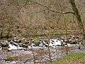 River Teign below Sharp Tor - geograph.org.uk - 22184.jpg