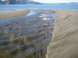 Ecology of the San Francisco Estuary - Freshwater stream feeding into the San Francisco Estuary