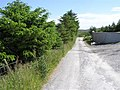 Road at Bauville Keeloges and Clonglash - geograph.org.uk - 1368296.jpg