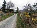 Road at Drumdeevin - geograph.org.uk - 1805987.jpg