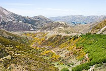 Road to Porters Pass 01.jpg