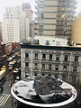 Rooftop View in New York.jpg