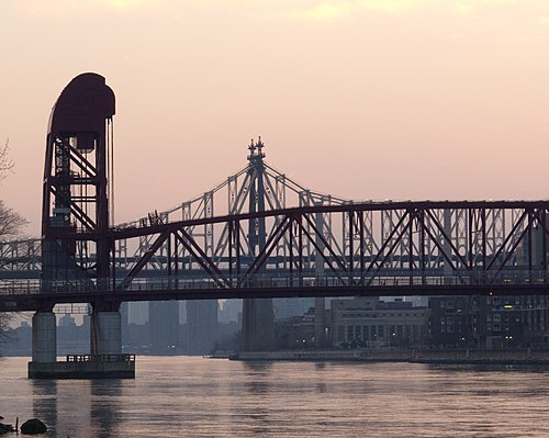 Roosevelt Island Bridge East.jpg