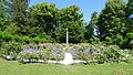 Rosengarten auf der Roseninsel.jpg