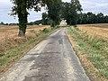 Route Mulatière St Genis Menthon 4.jpg
