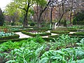 Royal Botanical Garden, Madrid - view 03.JPG
