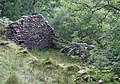 Ruined Farmhouse, Nant Carfan, Ceredigion - geograph.org.uk - 565595.jpg