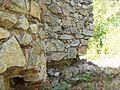 "Ruinele mănăstirii ""Sf. Treime"" - Vişina-Img-6.jpg"