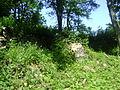 Ruiny Czerwony Strumień mit.JPG