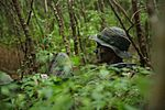 Rumble in the Jungle, 1st Recon Marines train in Hawaii 151121-M-KM305-024.jpg
