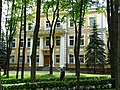 Russian Governor's Palace - Where Napoleon Lodged - Vitebsk - Belarus (27056743743).jpg