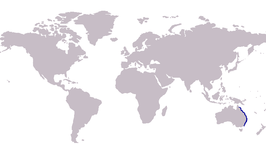 S. maculata distribution map.PNG