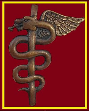 South African Military Health Service - Image: SANDF SAMHS Ops Medic chest insignia