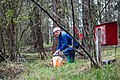 Sage Stomp XXVII…Larry contermplating his next move (7265269414).jpg