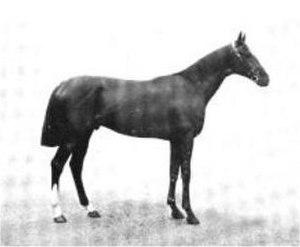 Sir James Percy Miller, 2nd Baronet - Sainfoin, Derby winner 1890
