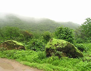 Dhofar Governorate - During the Khareef (Monsoon) the mountains around Salalah are rainsoaked and shrouded in fog