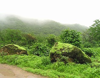 Arabian Peninsula - Salalah is a famous tourist destination in Arabia for its annual khareef season.