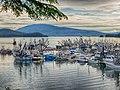 Salmon Seine Fleet HDR51.jpg